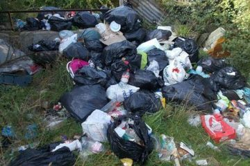 Hailsham woman fined after fly-tipping nappies and dog poo on Bournefree website