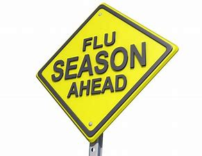 Parents urged to get their children vaccinated against flu virus for Eastbourne Bournefree website