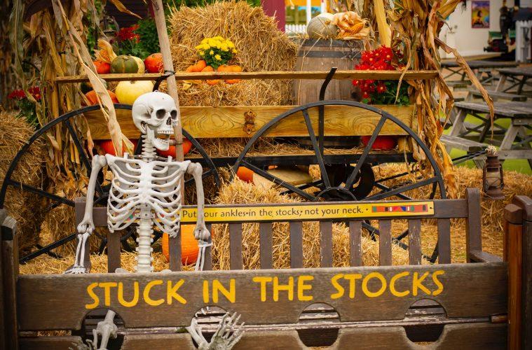 Drusillas Park Launches Another Spooktacular Halloween Shriek Week! on Bournefree website