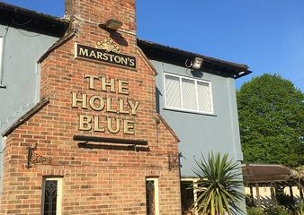 The Holly Blue at Pevensey on Bournefree website