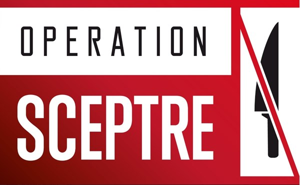 campaign against knife crime launches on Bournefree website