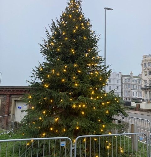 Tree of Light is up outside the Congress Theatre on Bournefree website