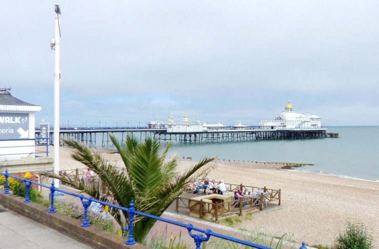 Caroline Ansell predicts 'bumper recovery for Eastbourne' on Bournefree website