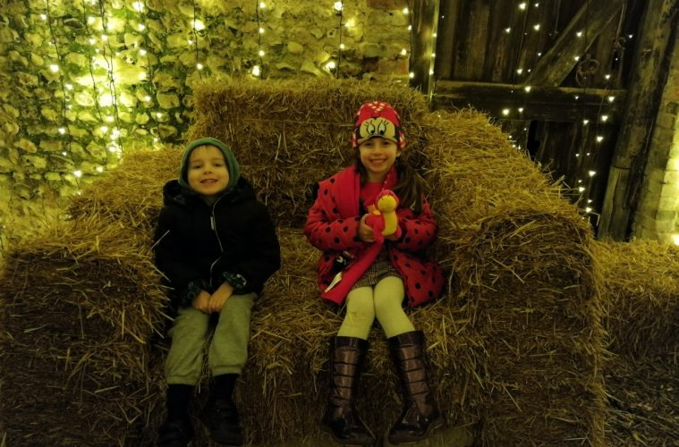 Sharnfold Farm's Christmas spectacular is 'a wonderful experience' on Eastbourne Bournefree website