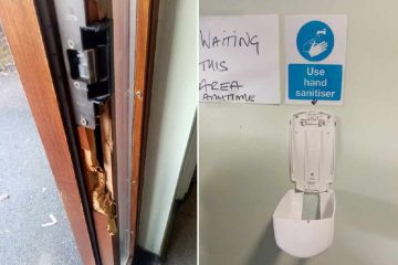 Public toilets vandalised by thugs in Hailsham on Eastbourne Bournefree website