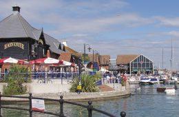 Councillors support older people enjoying more harbour walks on Eastbourne Bournefree website, Black dog 'jumped on' boy, aged just 2