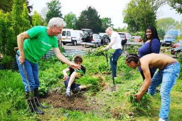 A Band of Brothers: Councillors support young men's charity with allotment improvements