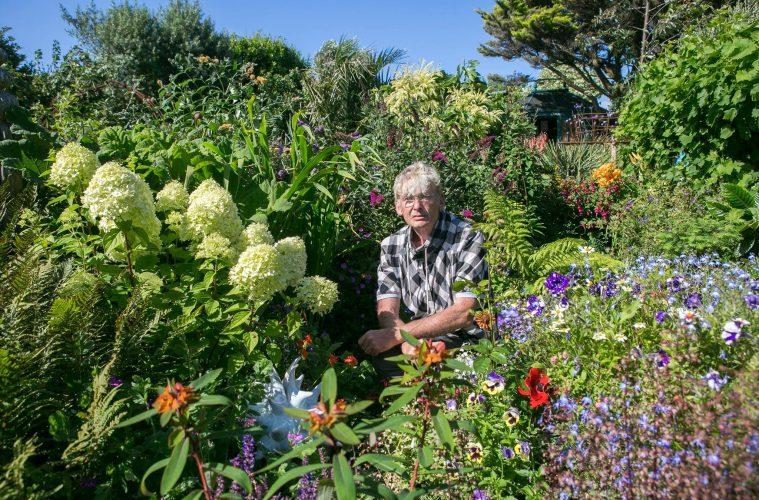 June Gardening with Geoff Stonebanks on Eastbourne Bournefree website