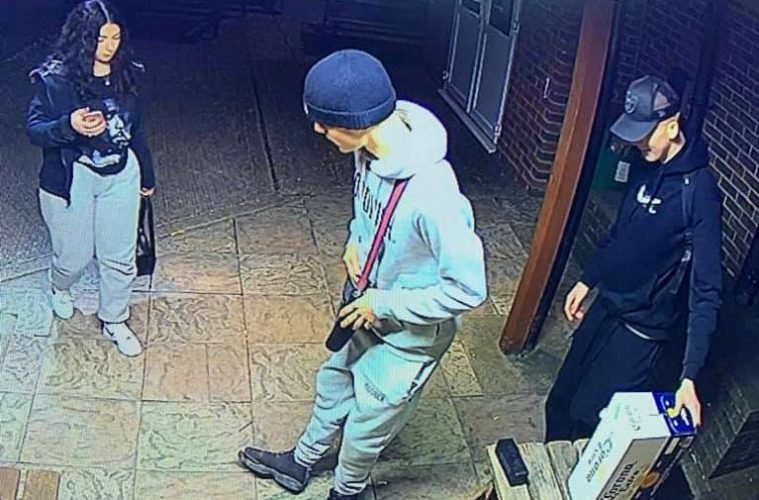 So who are they? Eastbourne Borough FC releases image of break-in suspects on Eastborough Bournefree website