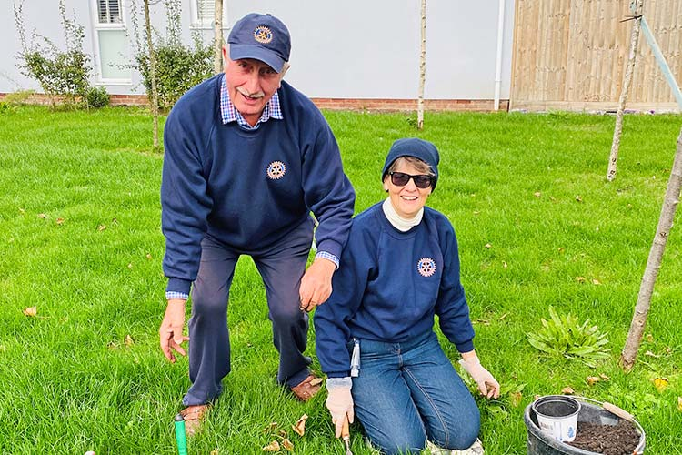 Purple pinky and the crocus: Why it's great to be part of Rotary in Eastbourne on Eastbourne Bournefree website