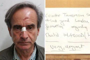 Jail for offender who tried to frame innocent man over Westminster attacks on Eastbourne Bournefree website