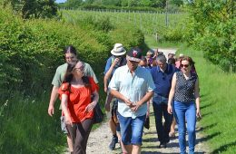 Walking and wine tasting: Eastbourne's Fizz on Foot is a tremendous success on Eastbourne Bournefree website