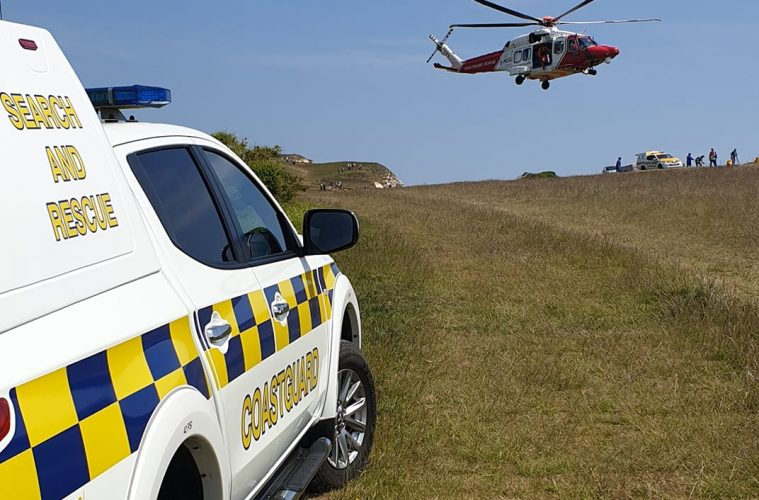 Dog falls from top of cliffs on Eastbourne Bournefree website