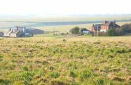 Art-based visitor attraction at Black Robin Farm is council's big idea - but Caroline fears it isn't bold enough and may be rejected on Eastbourne Bournefree website