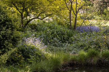 Arlington unique gardens to re-open to the public on Wednesday on Eastbourne Bournefree website