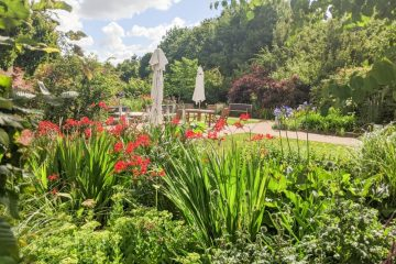 Book a guided tour of St Wilfrid's Hospice gardens on Eastbourne Bournefree website