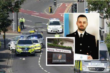 Eastbourne PC Louie Wellfare's heartfelt resignation letter as he faces trial over crash on Eastbourne Bournefree website
