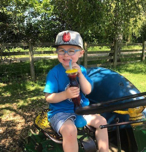 Sharnfold Farm set for a bumper summer on Eastbourne Bournefree website