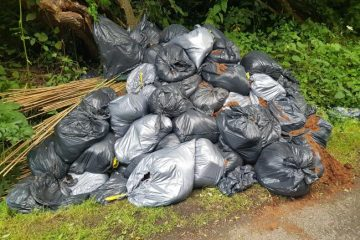 Reported cannabis cultivation set-up found fly-tipped in Polegate on Eastbourne Bournefree website