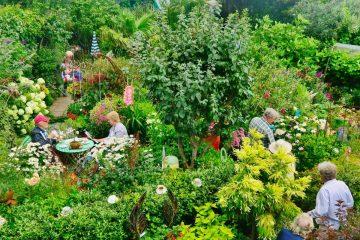 Gardens in Alfriston, Seaford and Brighton open to public