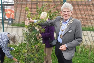 Reflection area launched in Willingdon Trees to remember Covid loves ones on Eastbourne Bournefree website