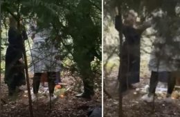 Boy, 14, films group 'cutting themselves' in candlelit ritual in East Sussex woods on Eastbourne Bournefree website