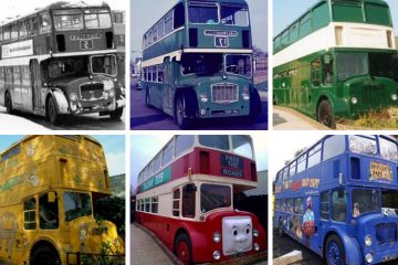 Drusillas resident of 40 years bus-ts a move! on Eastbourne Bournefree website
