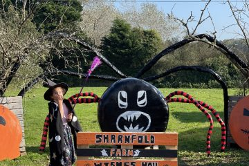 Halloween fun next week at Sharnfold Farm - book today! on Eastbourne Bournefree website